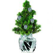 Weihnachtsbäumchen mit Geschenkpäckchen