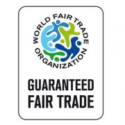 WTFO Logo