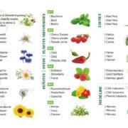 Verfügbare Pflanzen 1